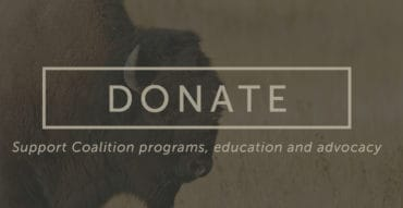 Slideshow - Donate