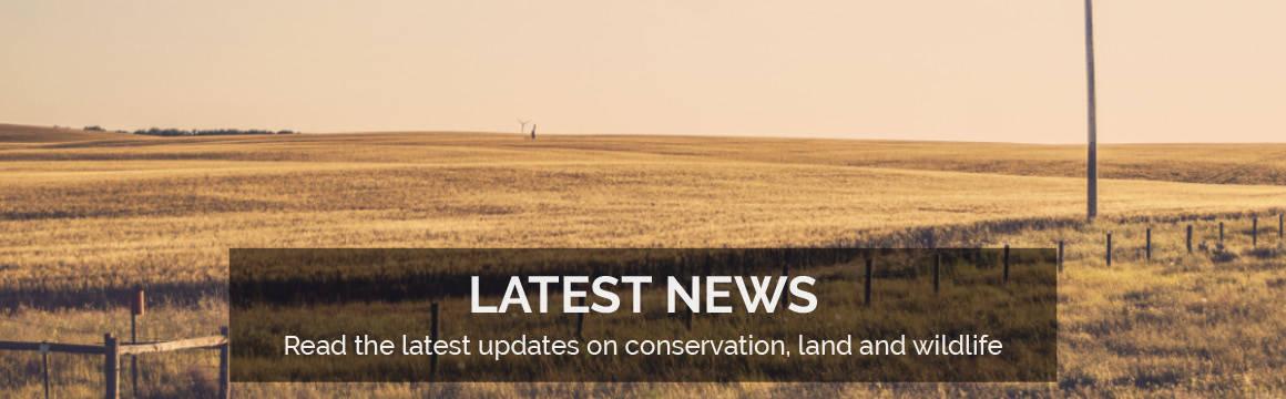 Slideshow - Latest News