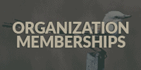 Organization Memberships