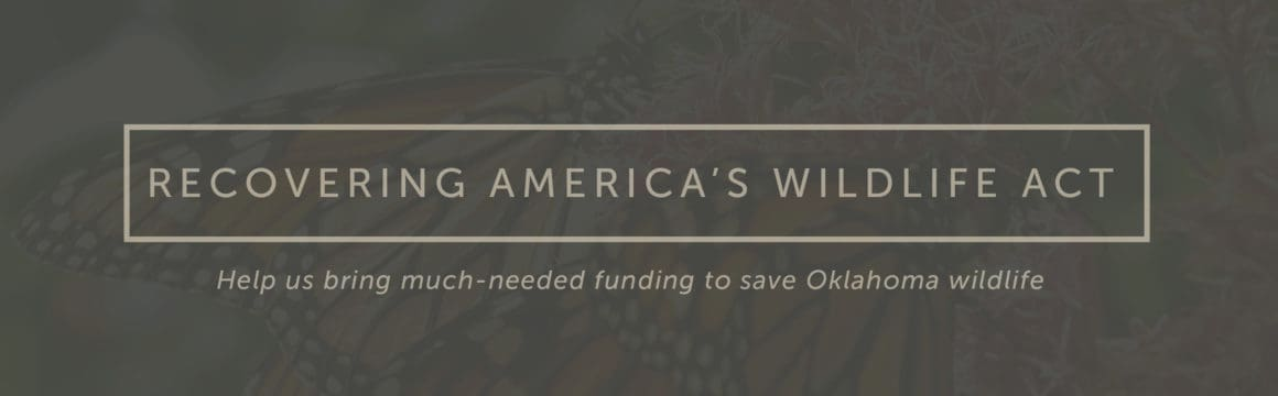 Recovering America's Wildlife Act - RAW Act Oklahoma